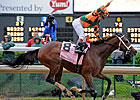Proud Spell Will Miss Apple Blossom