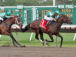 Prudhoe Bay wins the 2014 Jersey Shore Stakes.
