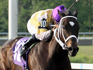 Purely Hot Heads to Woodbine for Bessarabian