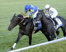 Purim Snatches Shadwell Turf Mile Win at Wire