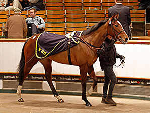 Gains Continue on Third Day at Tattersalls