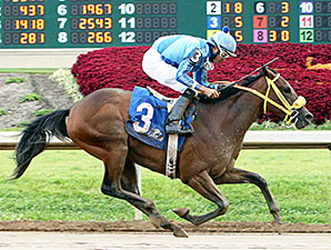Pyrite Blue Magna wins the Kevin Goemmer Tah Dah Stakes.
