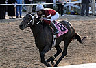Asmussen Stablemates to Run in La. Derby