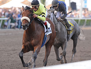 Quality Road Delivers in Florida Derby