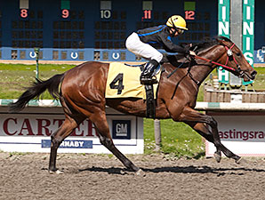 Quatre Cat wins the Ross Mcleod Stakes.