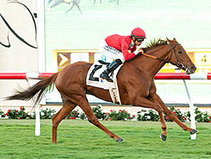 Queen of The Sand wins the 2014 Kathryn Crosby Stakes.