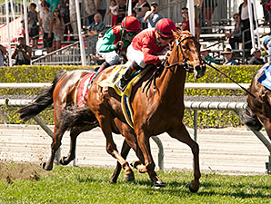 Queen of The Sand wins the 2015 Santa Barbara Handicap.