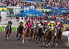 Slideshow: 2011 Queen&#39;s Plate and Irish Derby