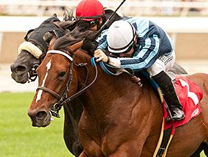 Quick Casablanca wins the 2014 Last Tycoon.