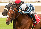 Last Tycoon Stakes Has International Flavor