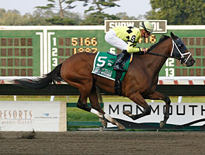 Quiet Giant wins the 2011 Molly Pitcher.