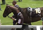 Royal Ascot Interview - Tony Millard