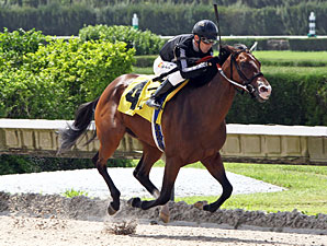 R Free Roll wins the 2013 Unbridled Stakes.