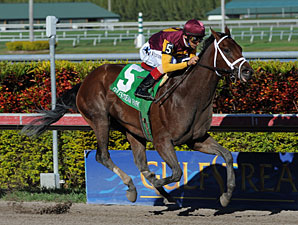 R Heat Lightning Drills Bullet at Gulfstream