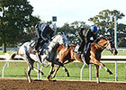 Pletcher Cup Workers Top Keeneland Tab