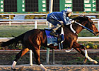 Rachel Breezes Six Furlongs in 1:14