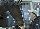 Rachel Alexandra Recovering from Surgery