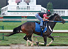 Rachel in Final Work Before Saratoga Sojourn