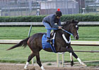 Rachel Alexandra Sharp in Churchill Workout