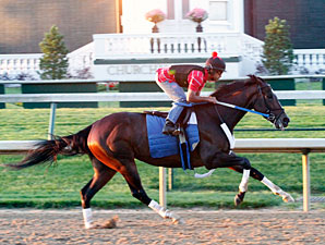 Rachel Alexandra works at Churchill Downs on June 7, 2010.
