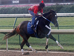 Rachel Alexandra works at Churchill Downs on June 21, 2010.