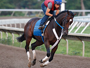 'Rachel Breezes Six Furlongs in 1:12.96