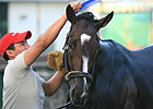 Rachel Alexandra Works on Training Track
