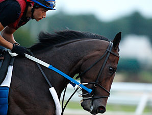 Rachel Alexandra gallops at Monmouth on July 23, 2010.
