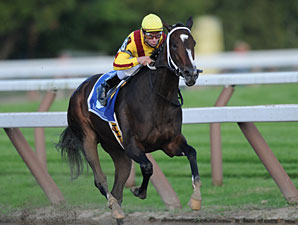 Rachel Alexandra Returns to the Track
