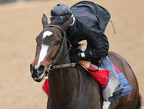 Rachel Alexandra Turns in Bullet Work