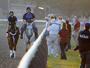 Rachel Alexandra works at Saratoga, July 5, 2010.