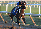 Final Breeze for Rachel Alexandra