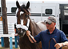 Lady Secret Stakes to be Shown on NTRA.com