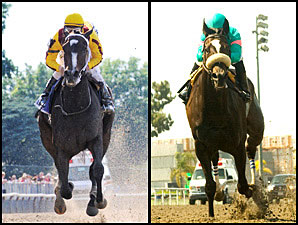 HRTV to Cover Rachel, Zenyatta Prep Races