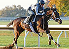 Trainer Pletcher: 'Couldn't Be More Pleased'