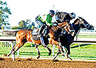 Pletcher Horses Hit the Track at Keeneland