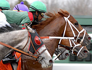 Wynn in Command Retired