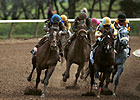 U.S. Wagering, Purses Continue to Decline