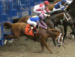 Rags to Riches, Foes OK After Grueling Belmont