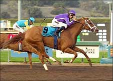 Impressive Rags to Riches Back for Santa Anita Oaks