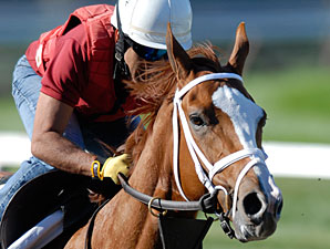 Rags' Breyer Proceeds to NTRA Charity