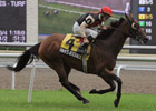 Rahy&#39;s Attorney Prevails in Nijinsky Stakes