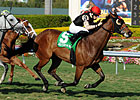 Grade I Winner Rahy's Attorney Retired
