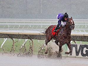 Rainbow Heir wins the 2014 New Jersey Breeders Handicap.