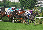 Planteur Easy Winner of Prix Ganay