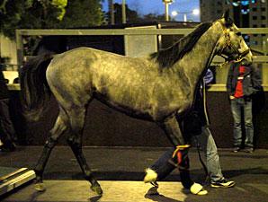 Rajsaman arrives at Hong Kong, December 3, 2011.
