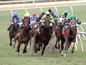 Rap Tale wins the 2009 Brookmeade Stakes.