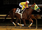 Rapid Redux Looks to Tie Record Next Week
