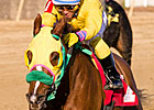 Rapid Redux Ties Single-Season Win Mark