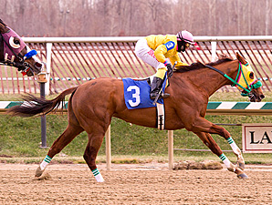 Rapid Redux Scores 22nd Straight at Laurel